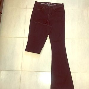 never worn article of society jeans